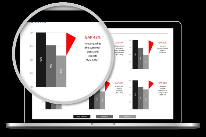 Performance Gap Indicator, Gap Score, Company Performance Report