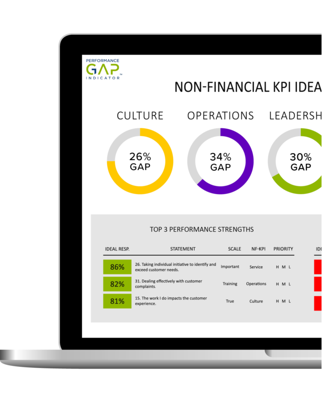 Performance Gap Indicator company-wide performance assessment online performance analysis